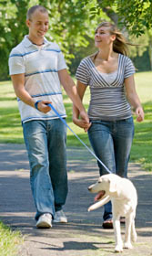Couple briskly walking the dog gets exercise and weight loss